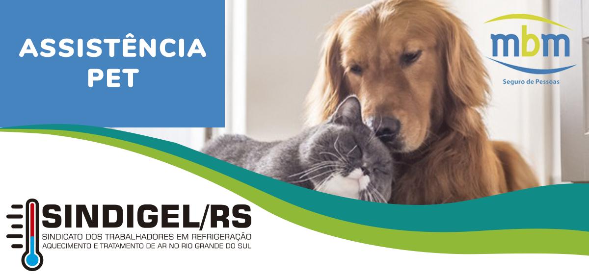 4b29f7d08 Trabalhadores parceiros do SINDIGEL/RS podem ter serviço de Assistência Pet